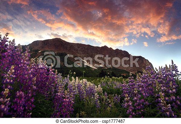 Montaña gótica - csp1777487