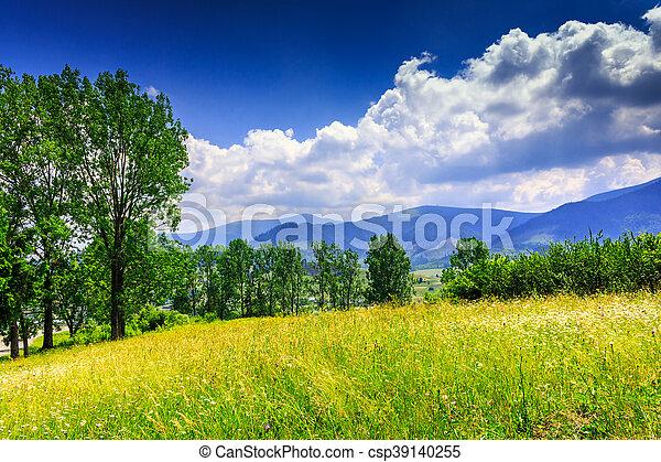 Imgenes de archivo de montaas nubes pradera verano encima