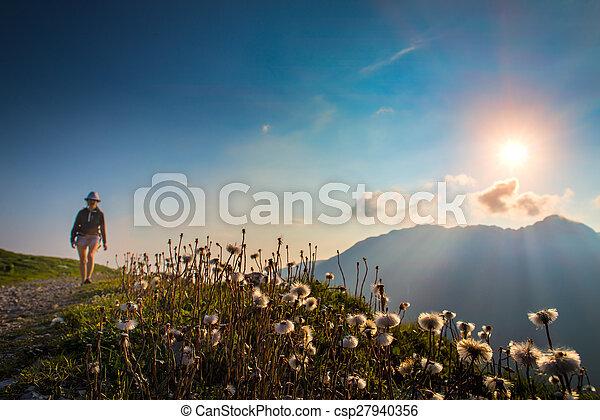 montañas, ocaso, plano de fondo, viajando arduamente, niña, flores, marcas - csp27940356