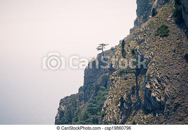 Montañas, solo, rocoso, paisaje, árbol, colores, efectos, película ...