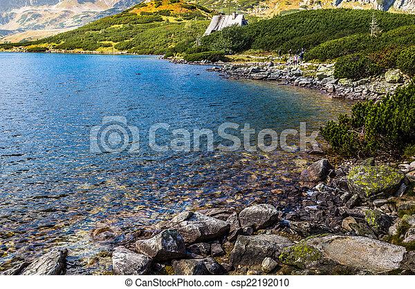 montagna, poland., laghi, 5, tatra, valle, lago, montagne - csp22192010