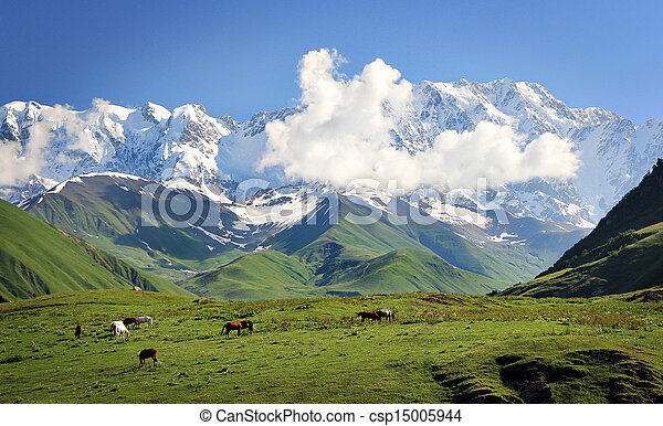 montagne - csp15005944