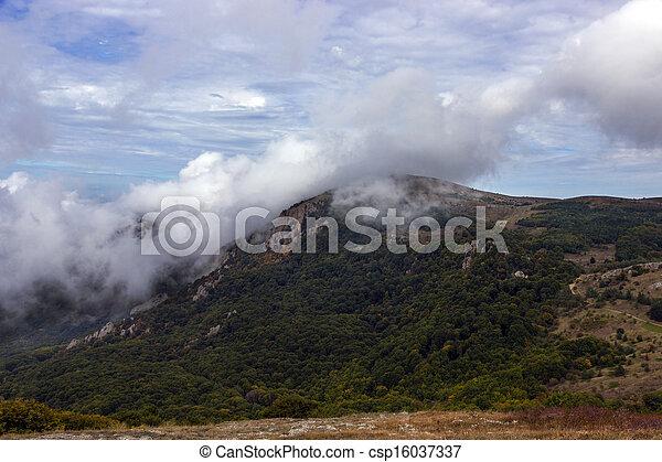 montagne, bois - csp16037337