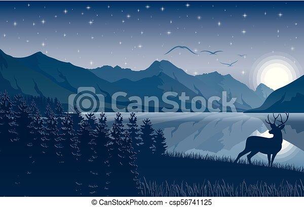 montagne, cielo, cervo, lago, stelle, notte, paesaggio - csp56741125