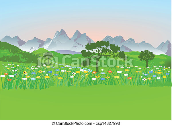 montagne, pré, montagnes - csp14827998