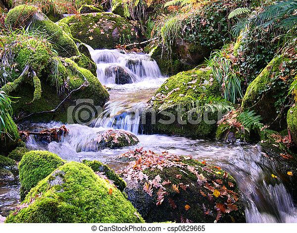 montagne, rivière - csp0829665