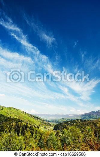 montagnes, forêt verte, paysage - csp16629506