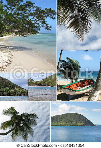 Montaje de una playa tropical - csp10431354