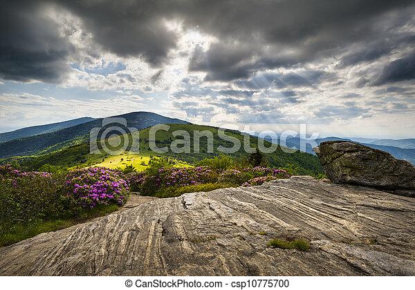 montanha azul, cume, montanhas, appalachian, nc, tn, rastro, roan, ocidental, norte, ao longo, borda, paisagem, carolina - csp10775700