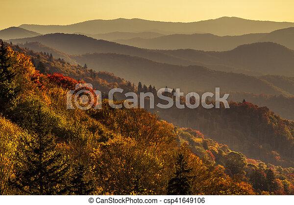 montanhas, grande, esfumaçado, parque, outono, nacional - csp41649106