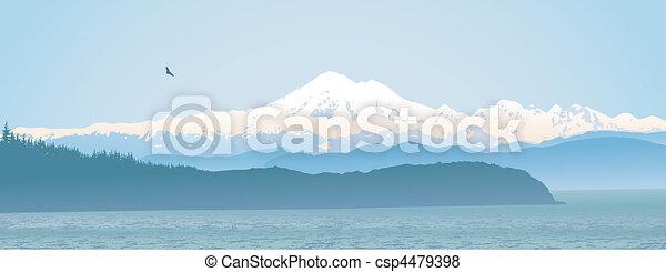 Mount Baker, estado panorámico de Washington - csp4479398