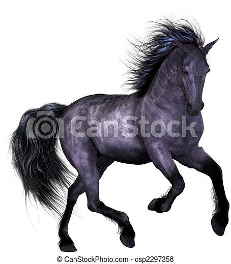 mooi, paarde - csp2297358
