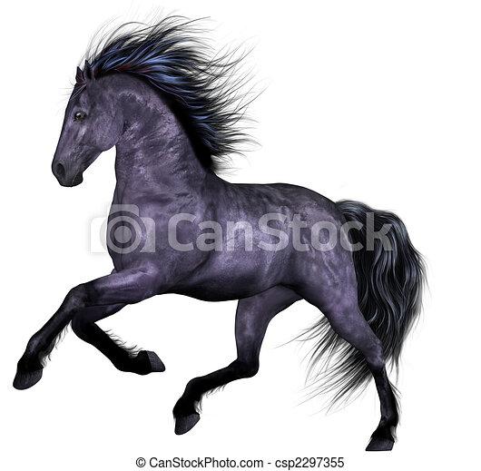 mooi, paarde - csp2297355