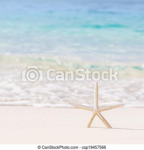 mooi, strand, achtergrond - csp19457566