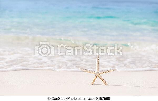 mooi, strand, achtergrond - csp19457569