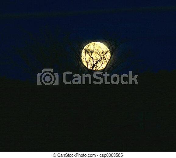 Moon 3989 - csp0003585