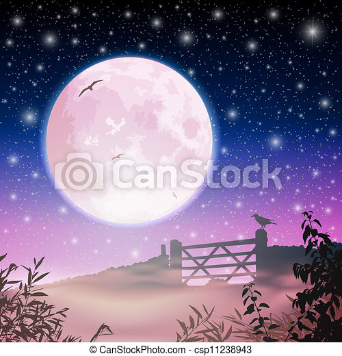 Moon and Night Sky - csp11238943