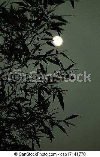 Moon in the sky - csp17141770