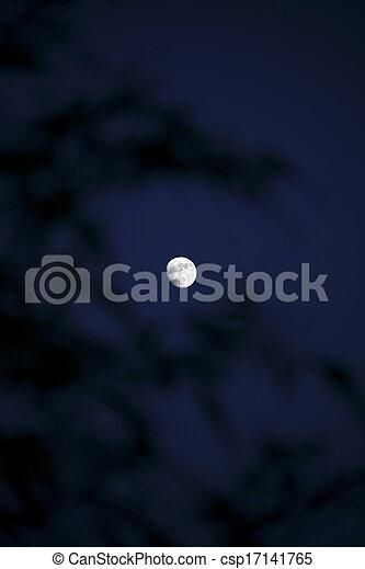 Moon in the sky - csp17141765