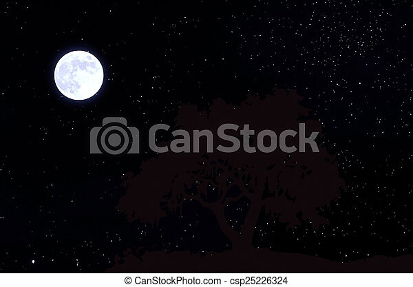 Moon in the sky with stars - csp25226324