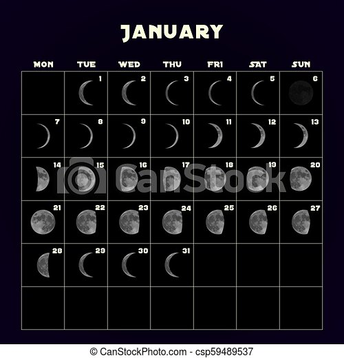 Calendar Of Moon Phases 2019 Moon phases calendar for 2019 with realistic moon. january. vector