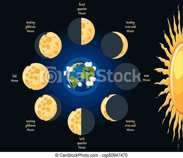 Moon Phases Basic Moon Phases Diagram Cheese Moon In Its Different