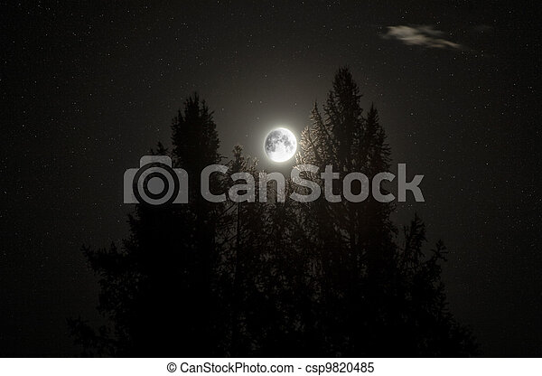 Moon - csp9820485
