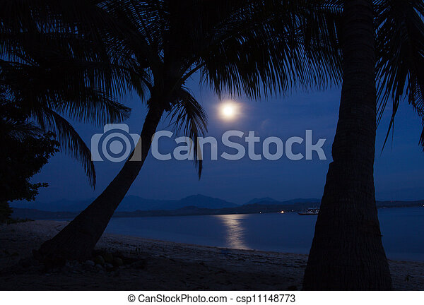 Moonlight on the water - csp11148773