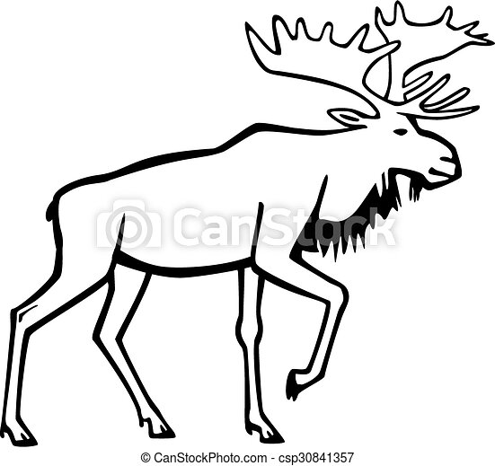 Moose Vector Line Drawing A Bull Moose