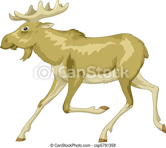 Moose - csp5791358