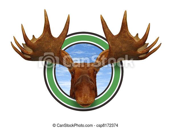 Moose Head Front - csp8172374