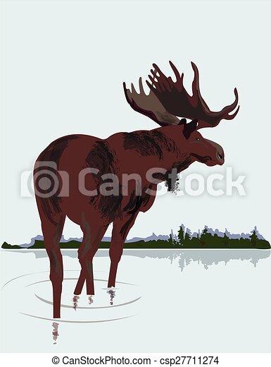 Moose - csp27711274