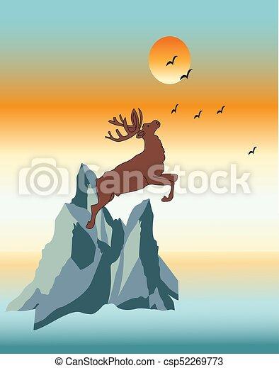 moose - csp52269773