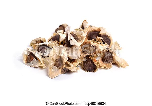 Moringa Oleifera seed isolated on white