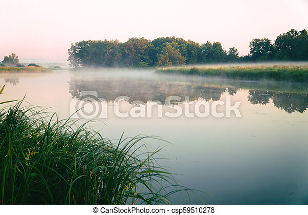 Morning fog on a quiet lake - csp59510278