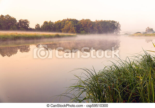 Morning fog on a quiet lake - csp59510300