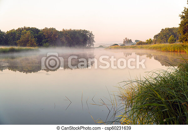 Morning fog on a quiet lake - csp60231639
