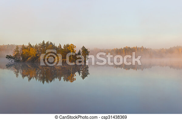 Morning fog on forest lake - csp31438369