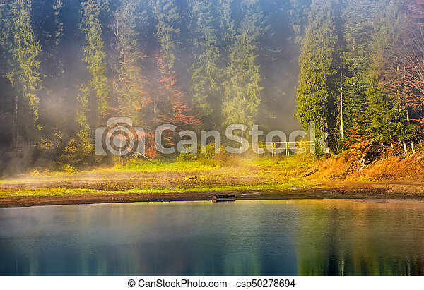 morning fog on the lake in spruce forest - csp50278694