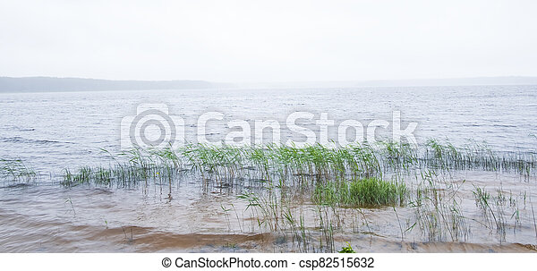 morning fog over a lake in summer - csp82515632