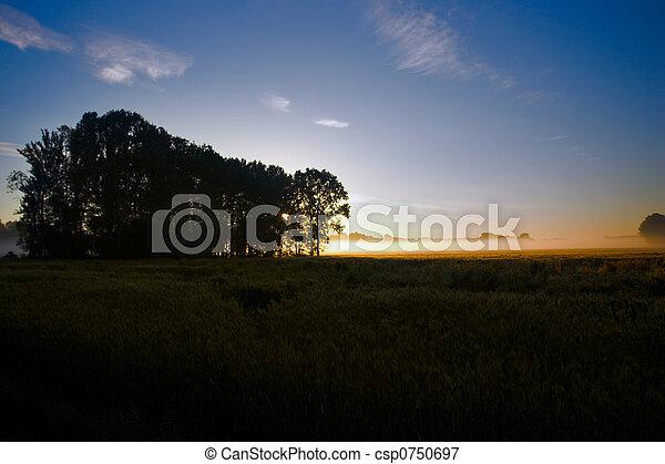 Morning light - csp0750697