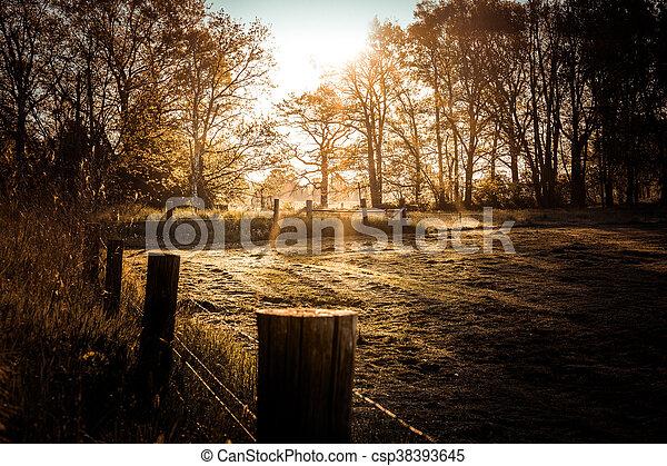 morning light - csp38393645