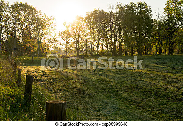 morning light - csp38393648