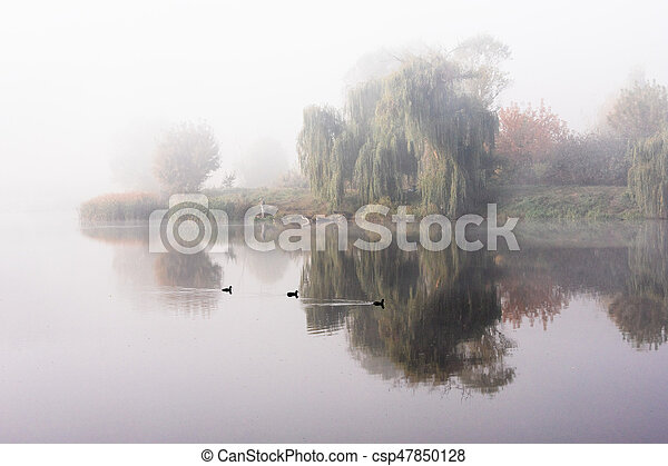 Morning mist over the lake with reflection in the water. Fog on a river - csp47850128