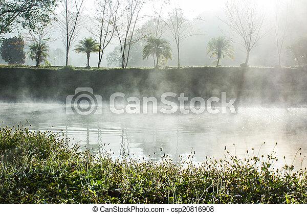 Morning Mist  - csp20816908