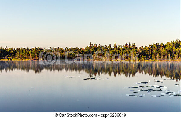 morning on a forest lake - csp46206049