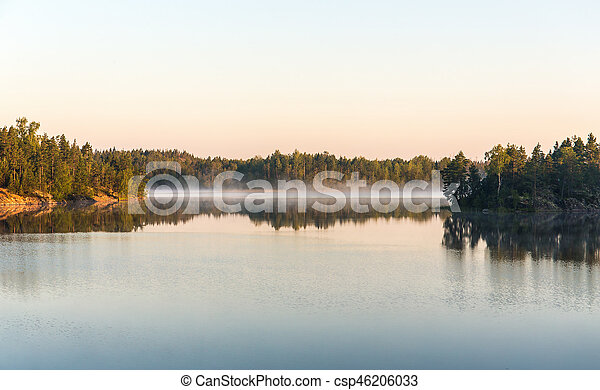 morning on a forest lake - csp46206033