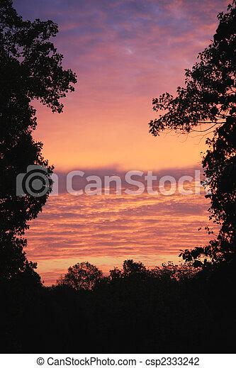 Morning Sunrise - csp2333242