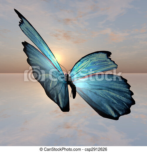 Morpho Butterfly - csp2912626