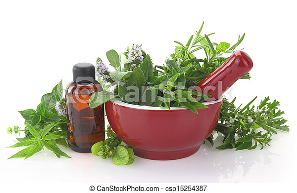 Mortar and pestle with fresh herbs and essential oil bottle - csp15254387